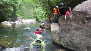 Swimming through the stream